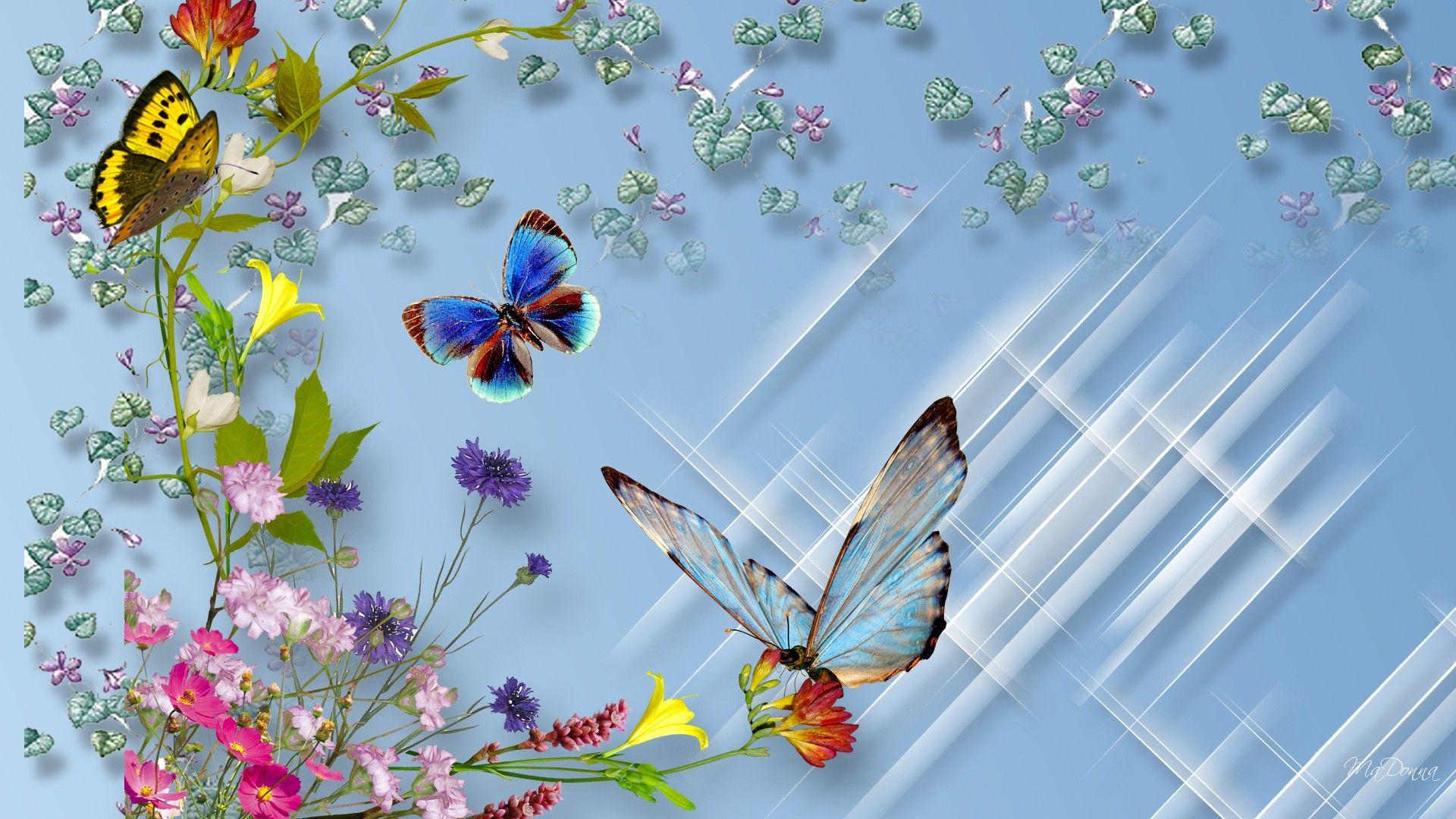 Бабочки подлетающие к цветкам  № 2991672  скачать