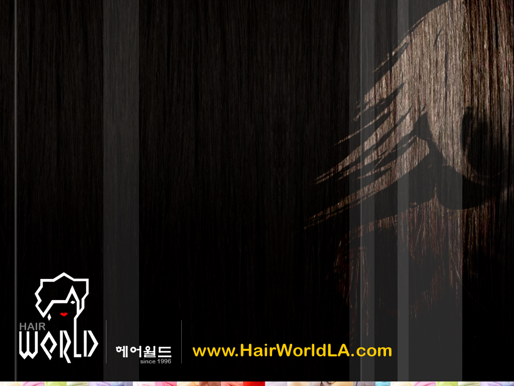 Hair Stylist Desktop Wallpaper Hair world salon   los angeles 1024x768