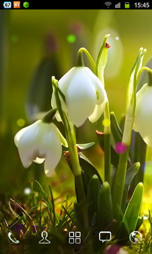 Beautiful interactive white flowers Who could have known nature can 307x512