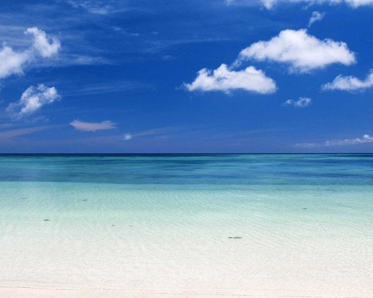 Beautiful Caribbean Beach High Resolution Windows 8 Wallpaper HD 1280x1024