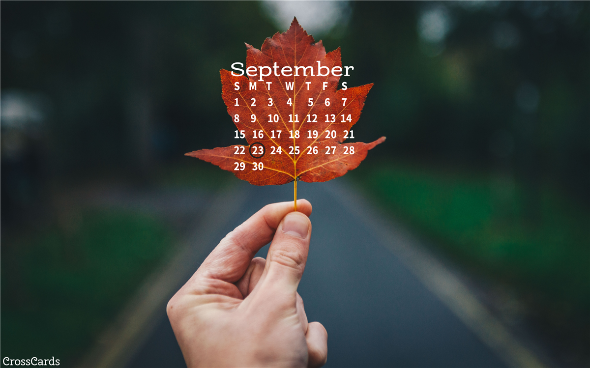 Beautiful September Desktop Mobile Wallpaper   Backgrounds 1200x749