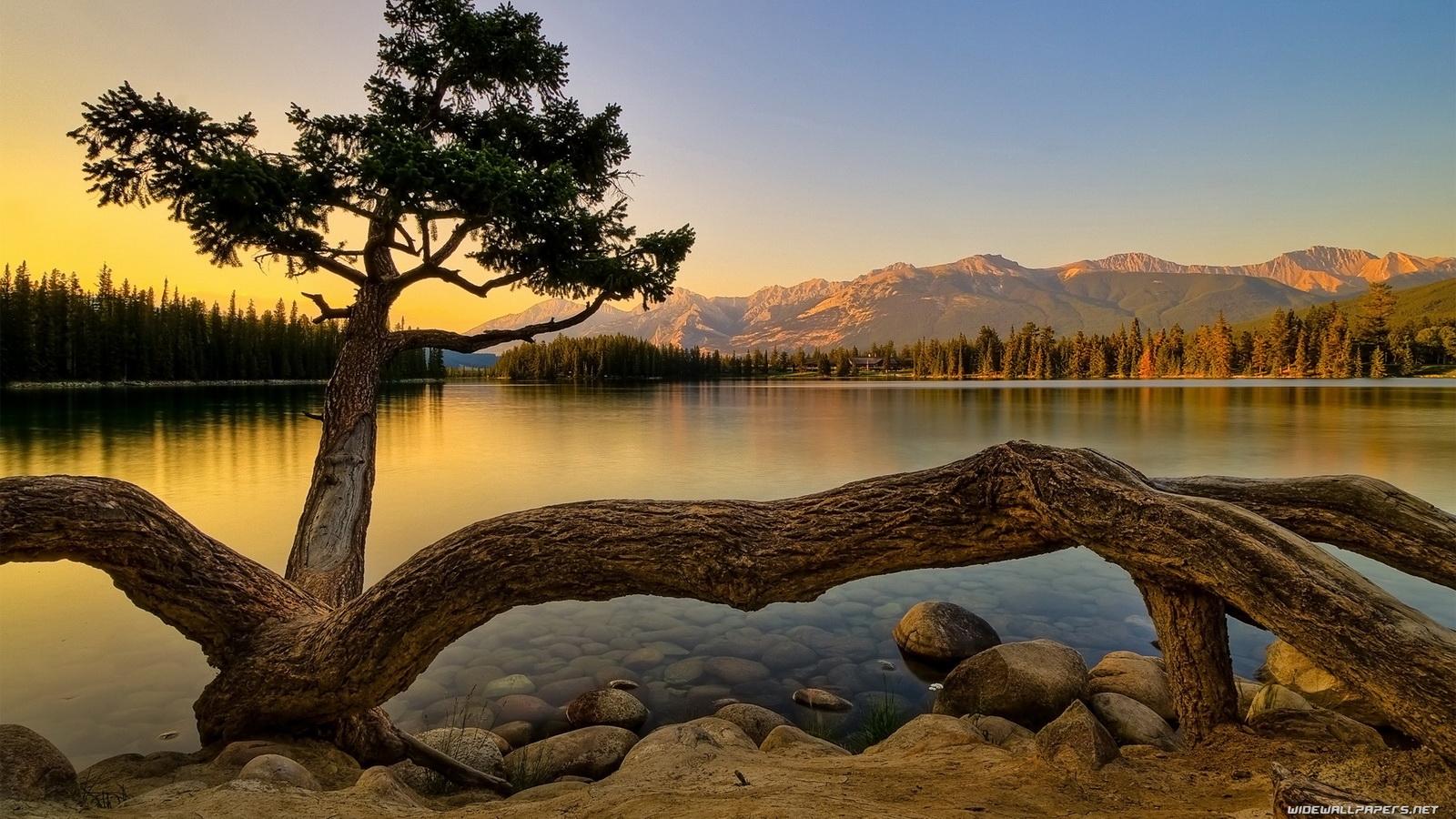 Daniel Sierra 3d Nature Hd Nature Wallpapers for Desktop 1600x900