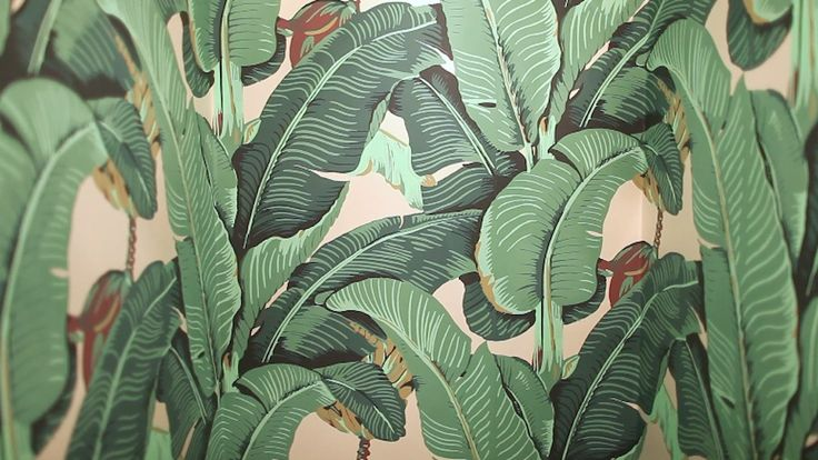LEAF How To Wallpaper   this beverly hills hotel palm tree print is 736x414