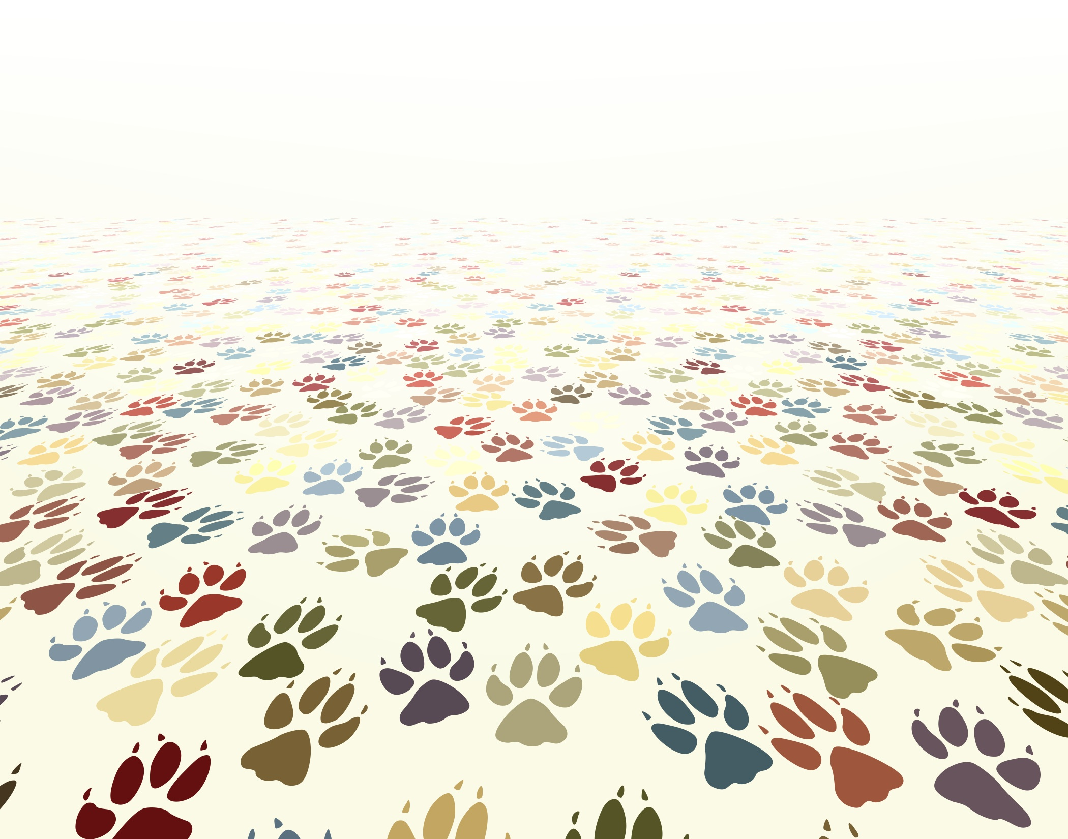 Dog Paws Wallpaper - WallpaperSafari
