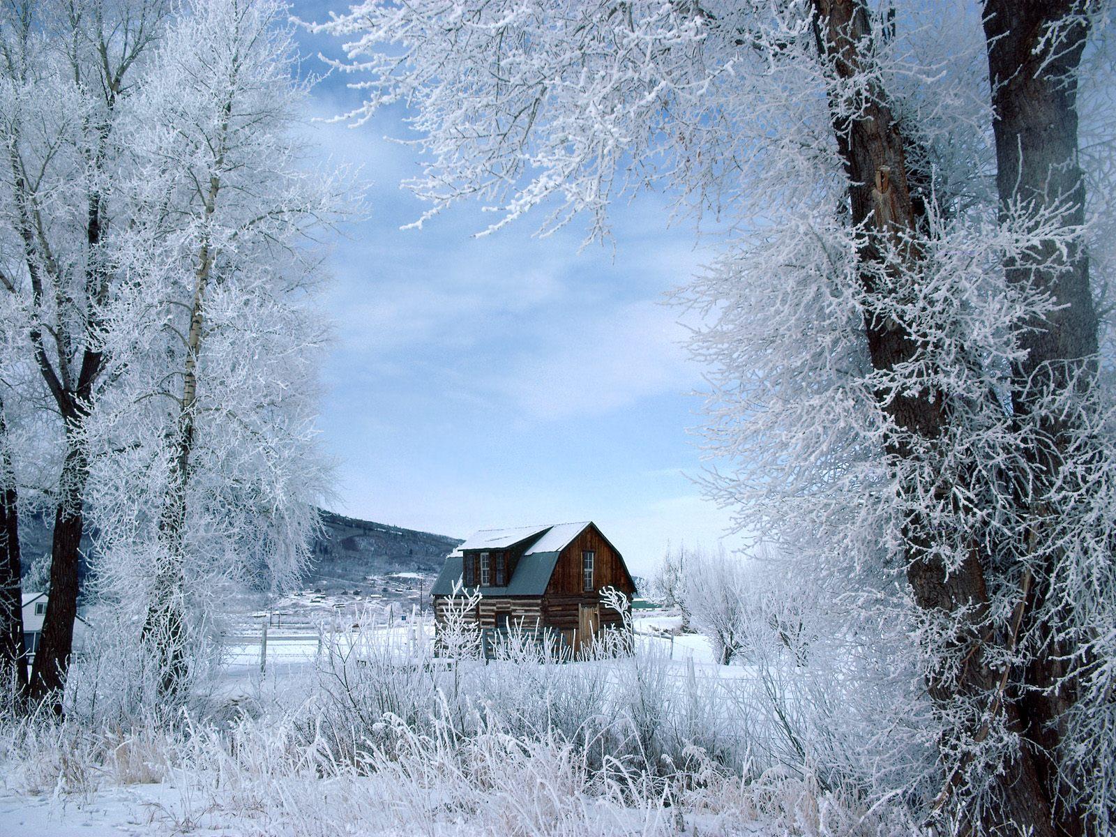 16001200 Winter wonderland Dreamy Snow Scene wallpaper 1600x1200