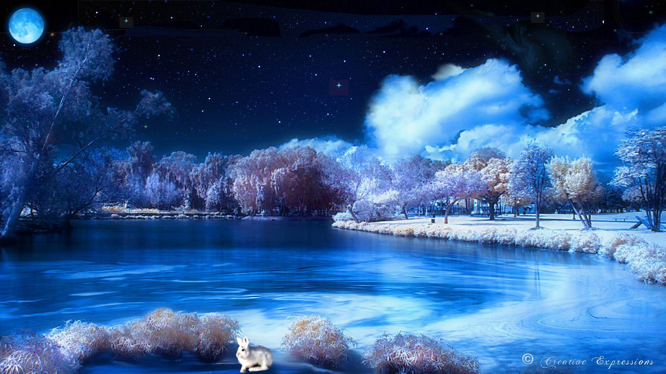 Download Winter Night Wallpaper Images HD 1366x768