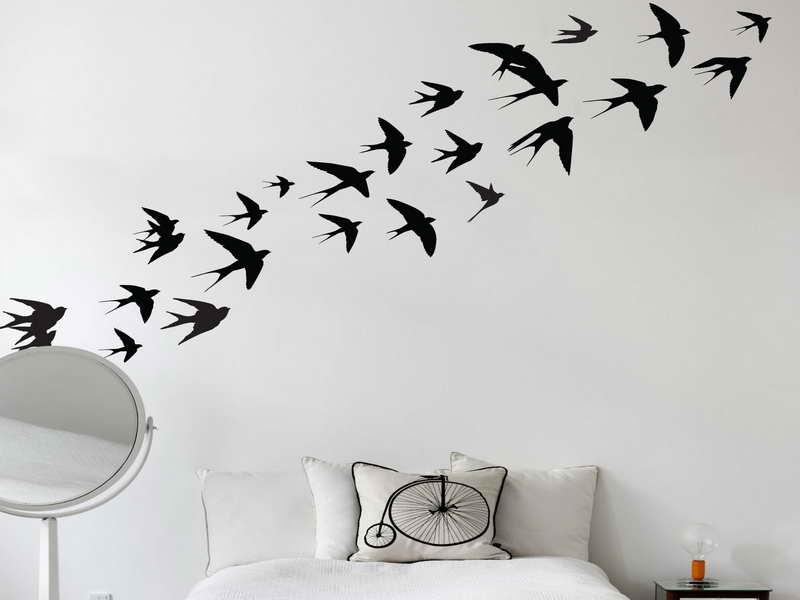 Bird Wallpaper For Walls Decor Fortikur 800x600