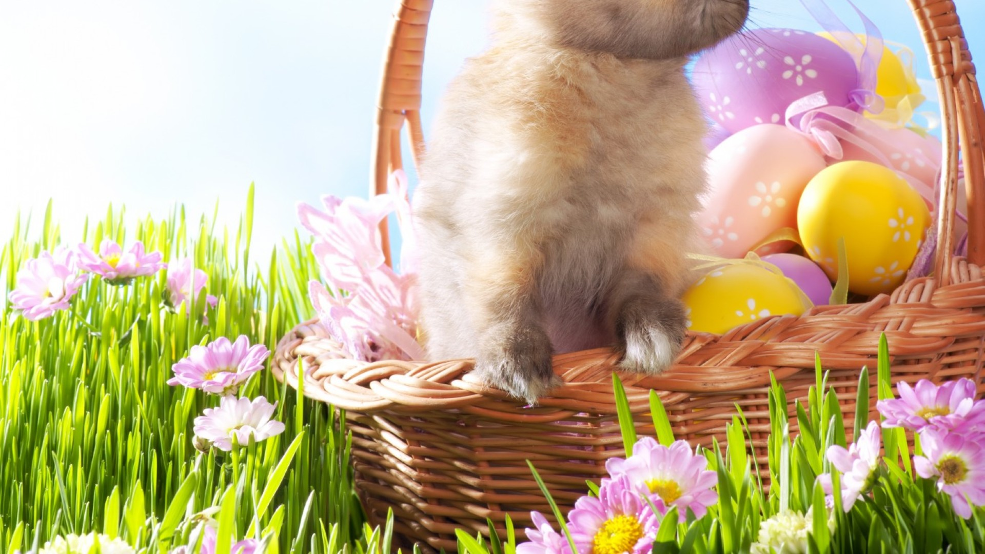 Easter Wallpaper HD for your Desktop 1920x1080