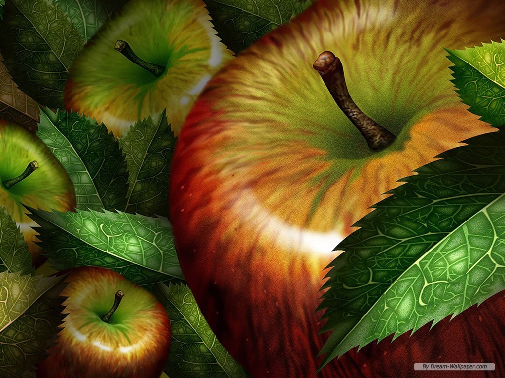 Apple Wallpaper   Fruit Wallpaper 7004640 1024x768