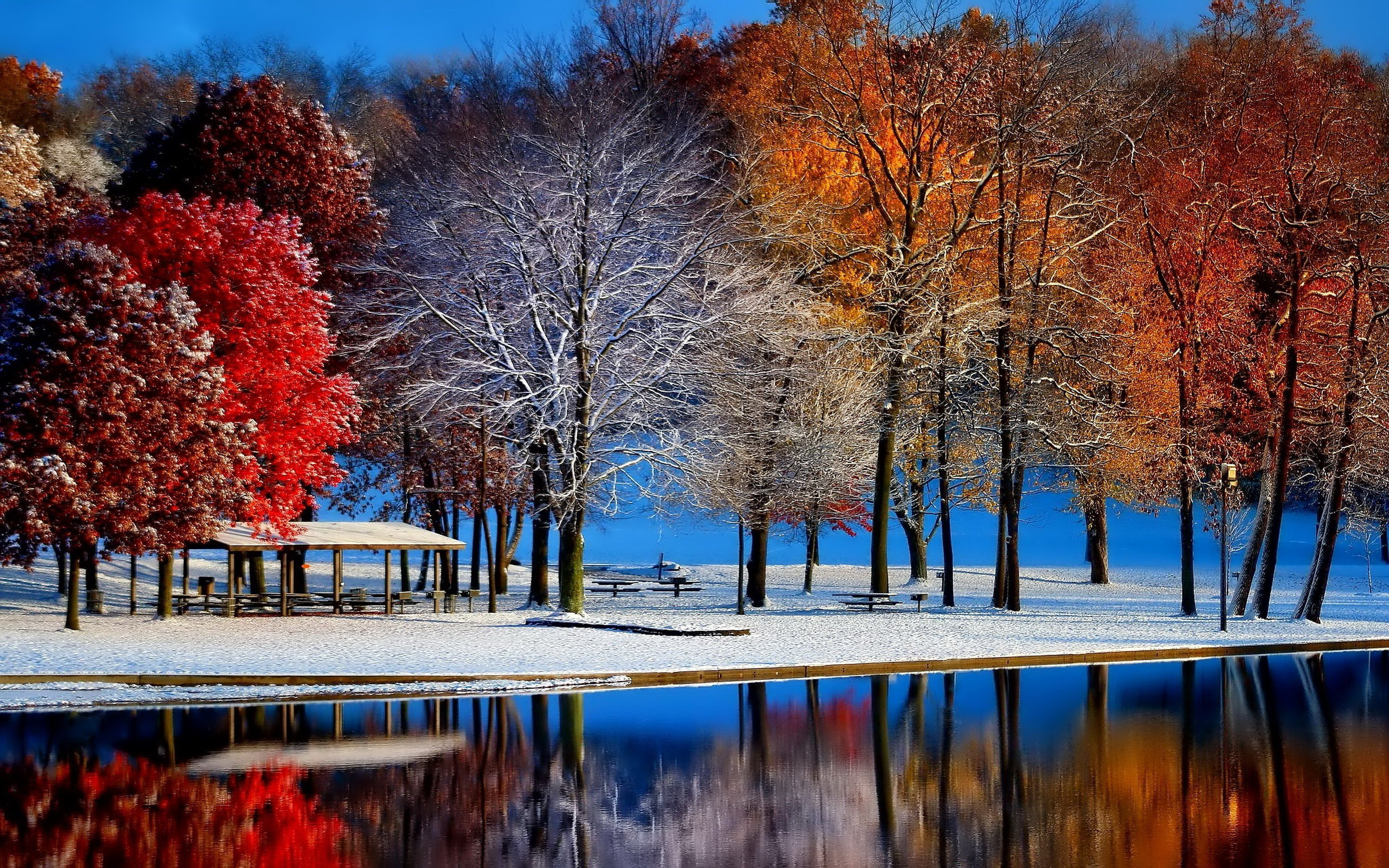 Autumn with winter 3000 x 1875 Forest Photography MIRIADNACOM 3000x1875