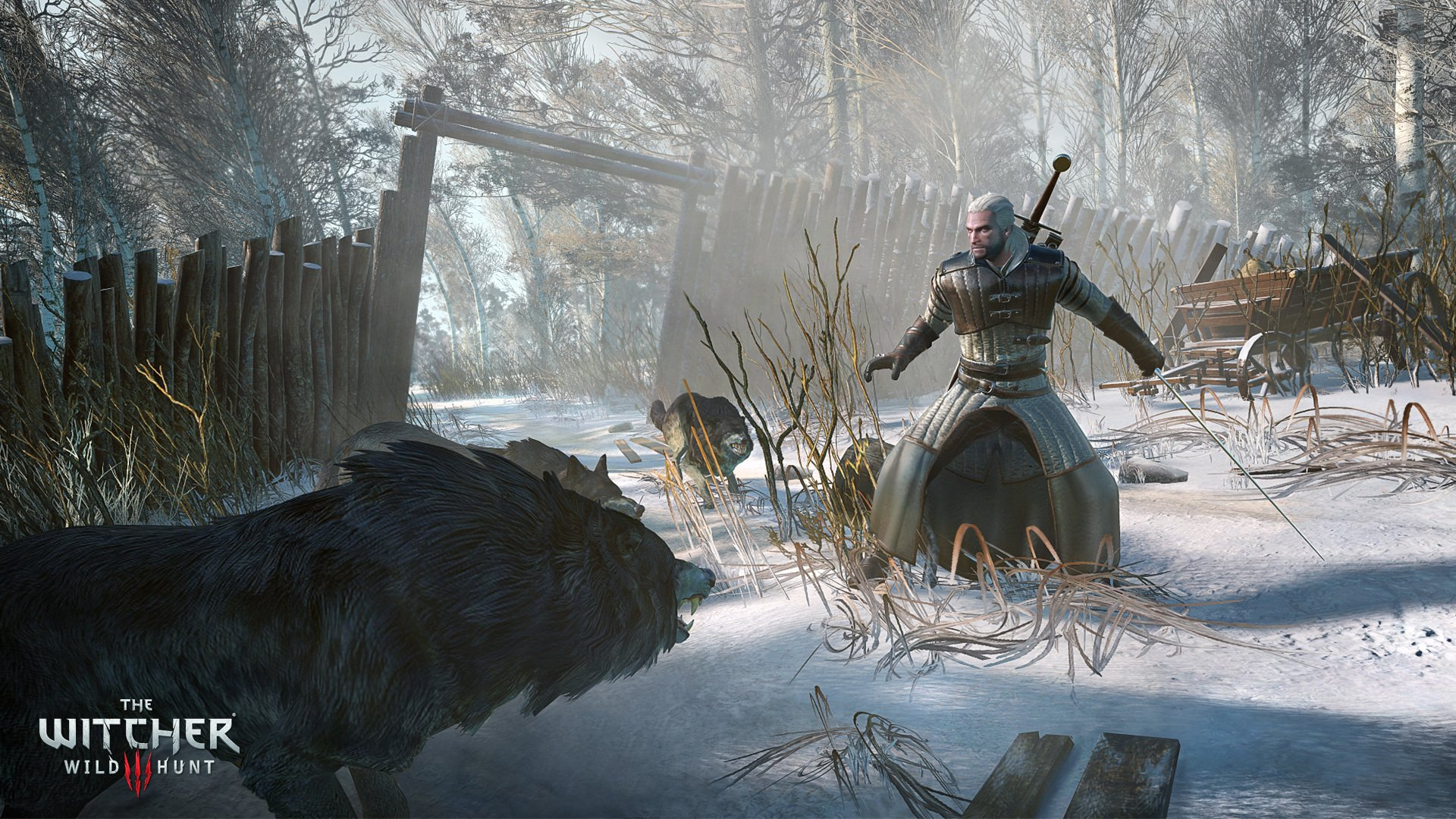 the Collection The Witcher Video Game The Witcher 3 Wild Hunt 547264 1920x1080