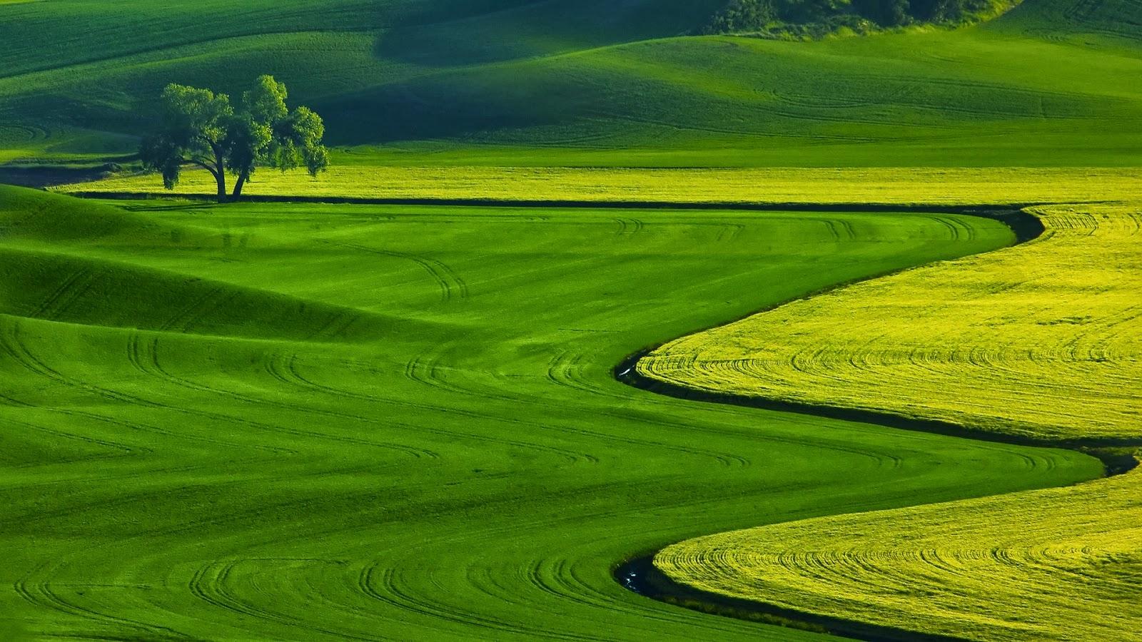 Hd wallpaper download for laptop - Full Hd Nature Wallpapers Free Download Full Hd Nature Wallpapers Free