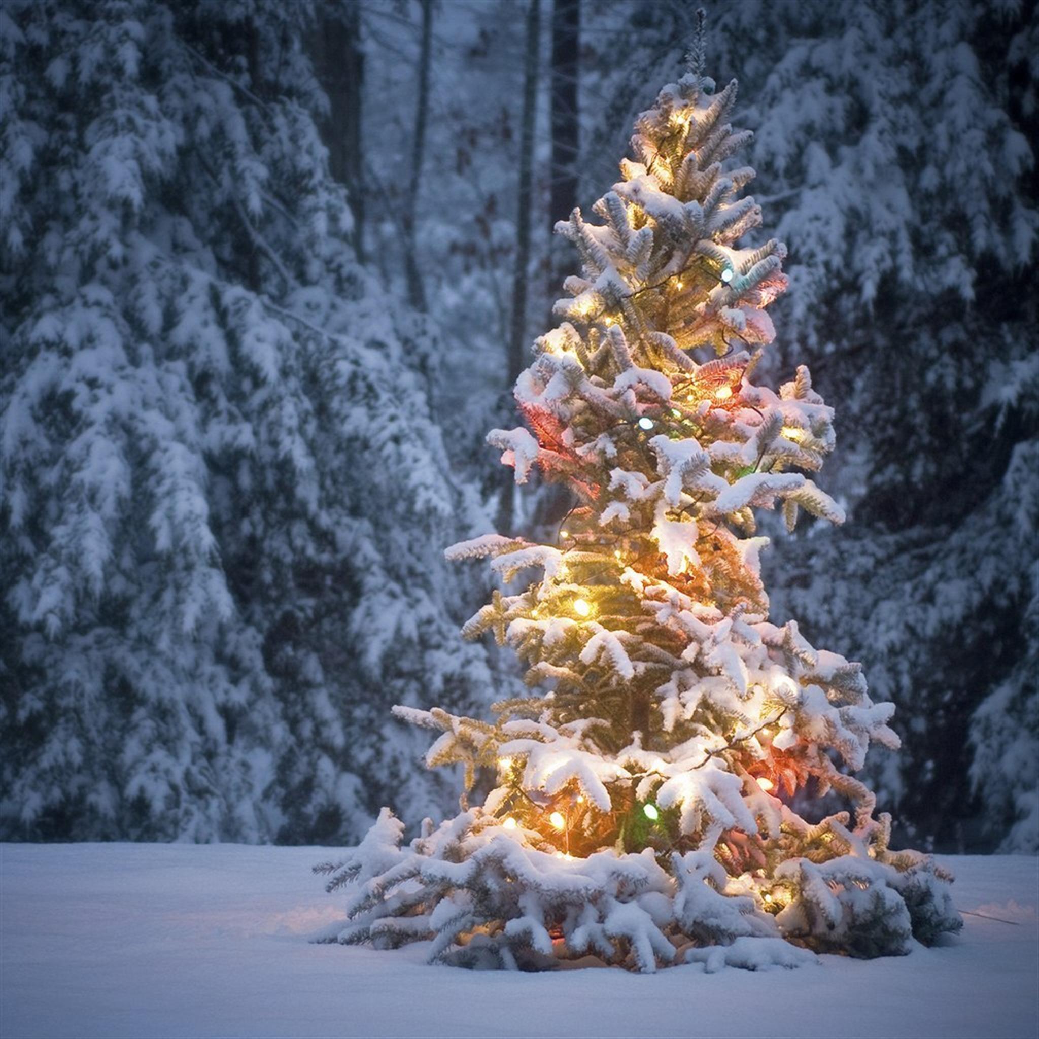 Christmas iPad Air Wallpapers HD 69 iPad Air Retina Wallpapers and 2048x2048