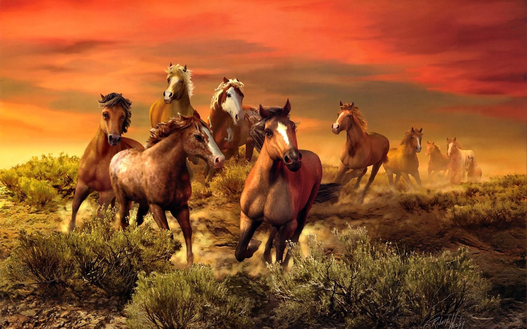 Free horse wallpaper wallpapersafari painting horses hd wallpaper 2013 hd wallpaper 1680x1050 altavistaventures Image collections