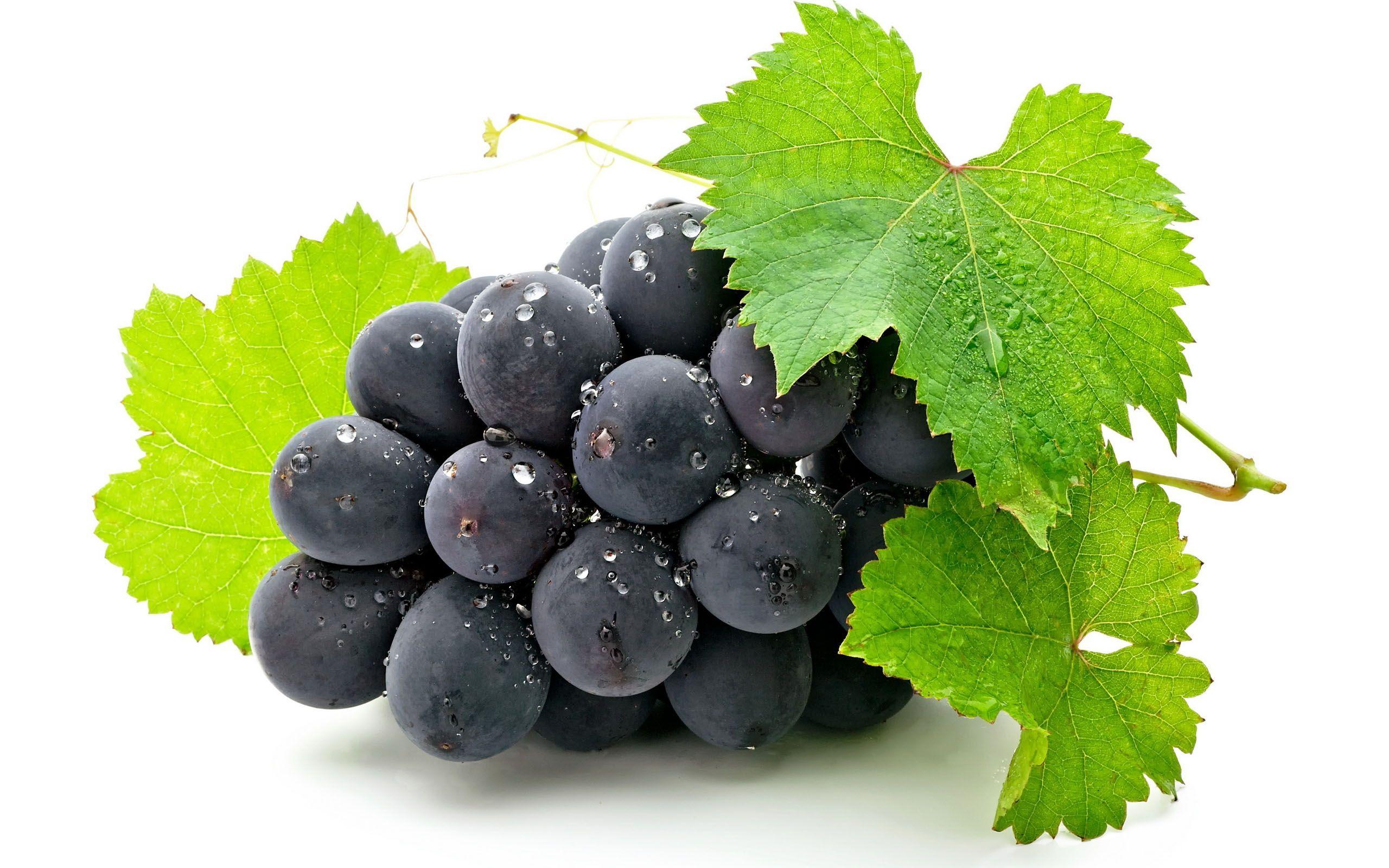Wallpaper HD Sweet Grape Fruits My Favorite ones Sugared 2560x1600
