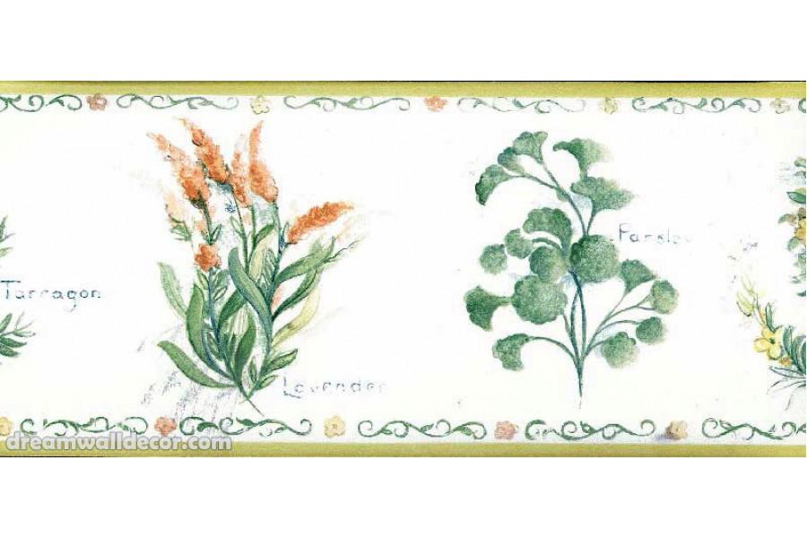 White Background Red Flower Wallpaper Border 900x600