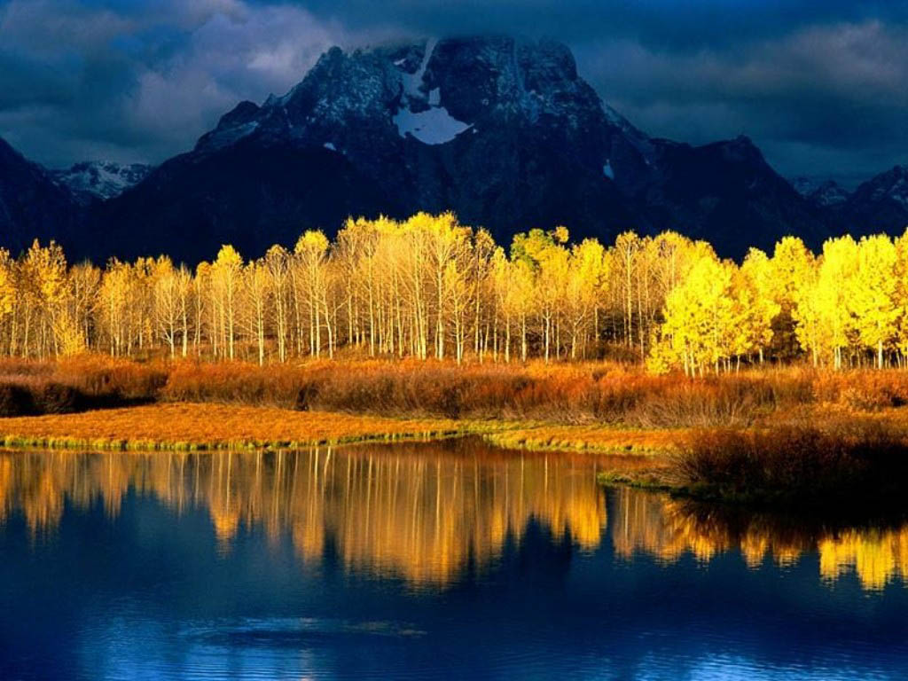 3d Nature Wallpaper Images Fun 1024x768
