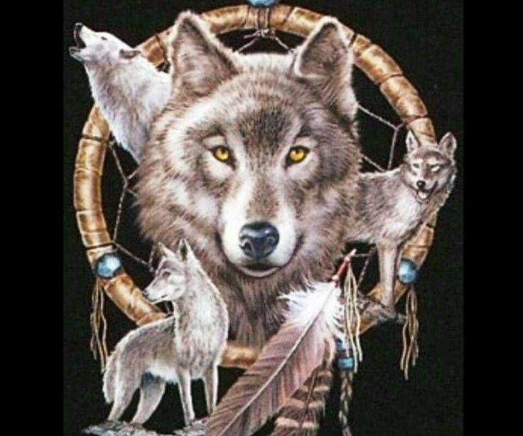 dreamcatcher native wolf spirit wallpaper - photo #18