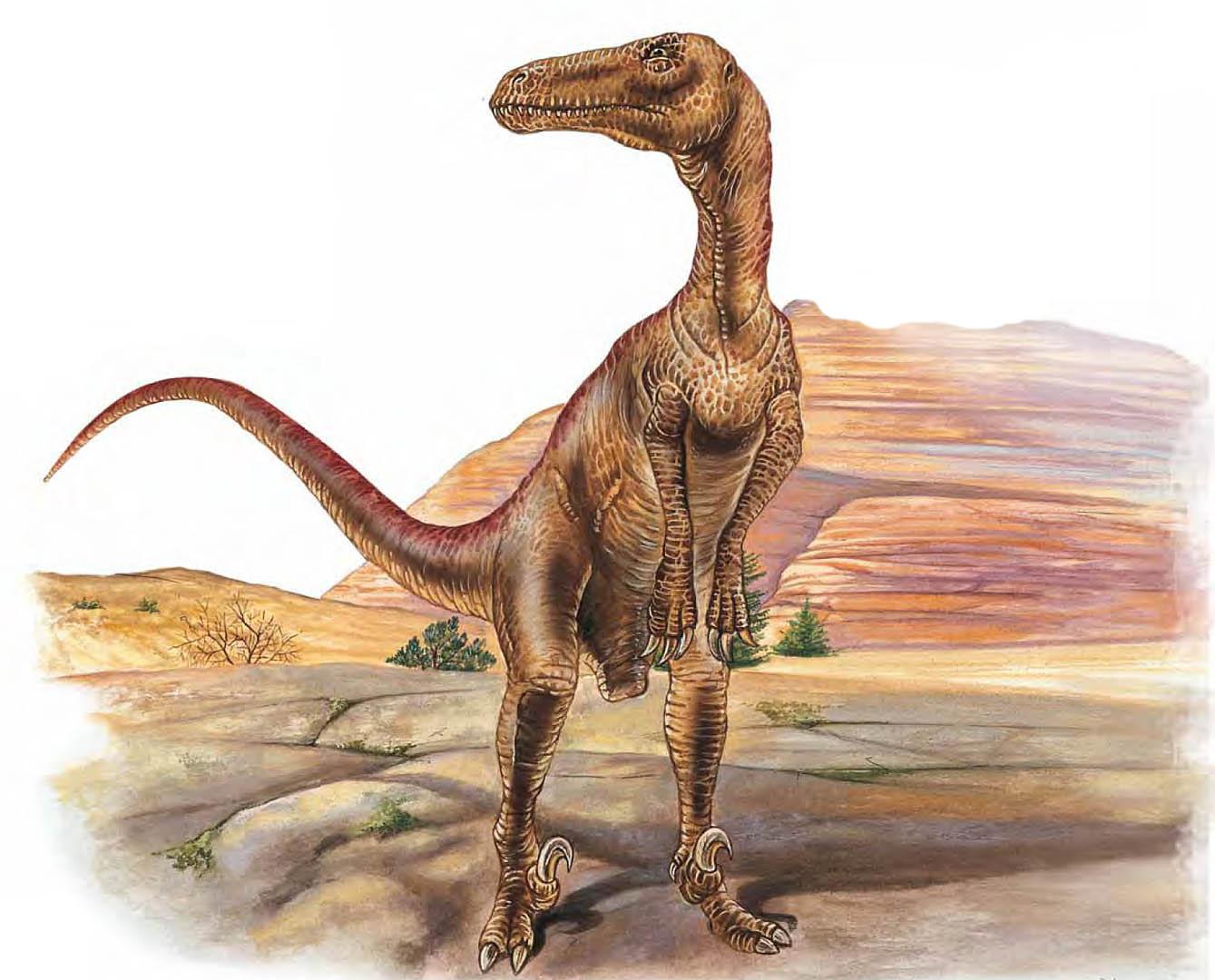 Utahraptor   Carnivore Dinosaurs 1339x1080