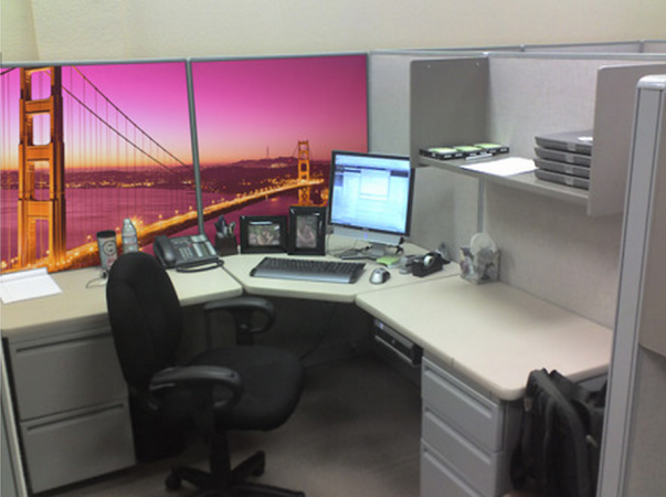 Cubicle wallpaper covers beige partitions cant conceal life of 603x450