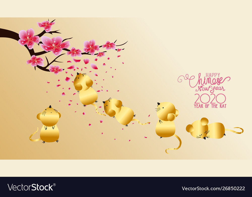 Chinese new year 2020 with blossom wallpapers Vector Image 1000x780