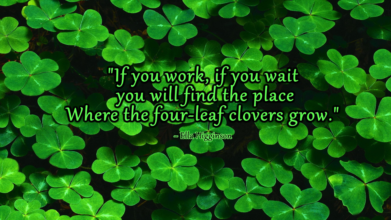 four leaf clover wallpaper Four Leaf Clovers Ella Higginson 1600x900