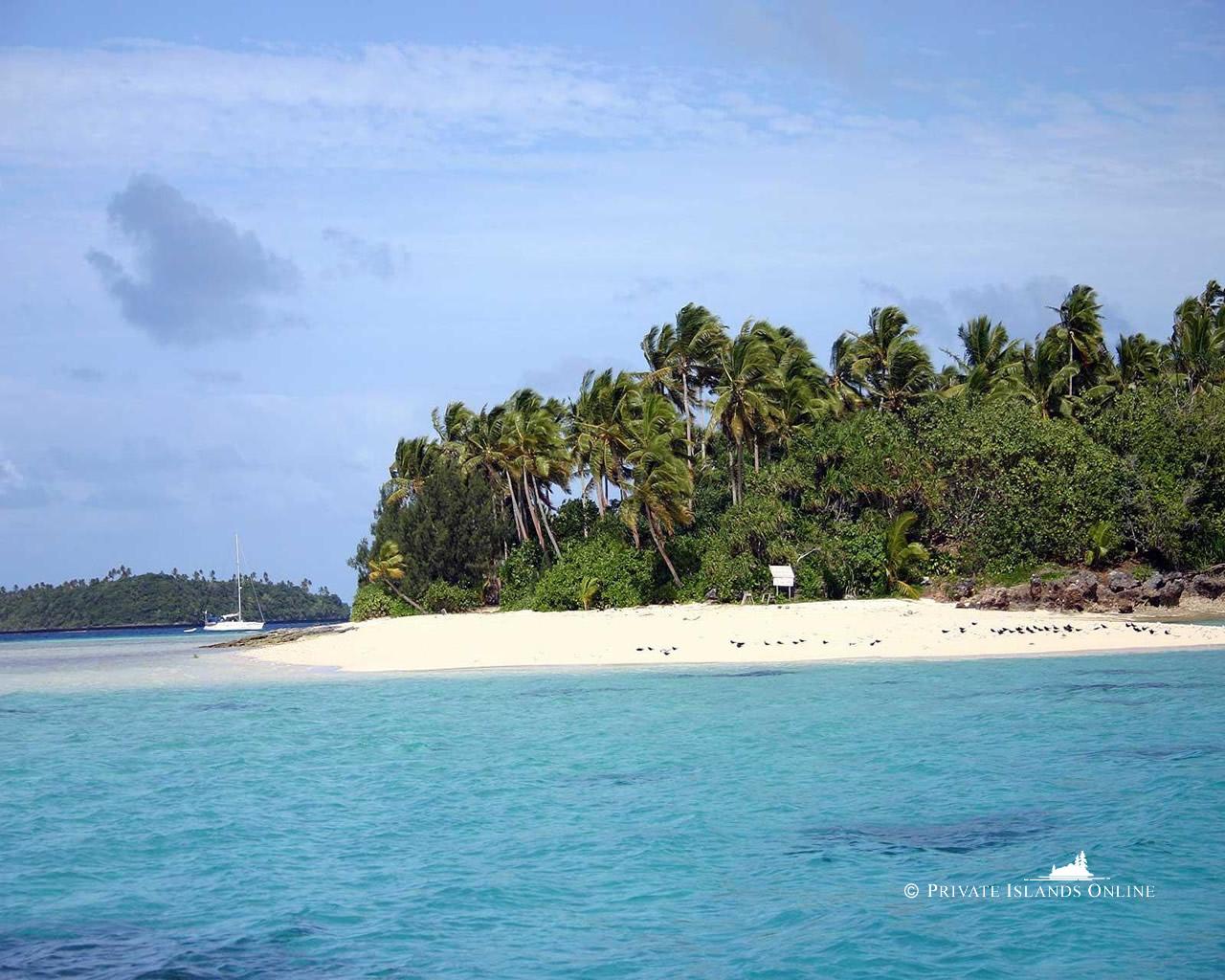 Tropical Desktop Backgrounds