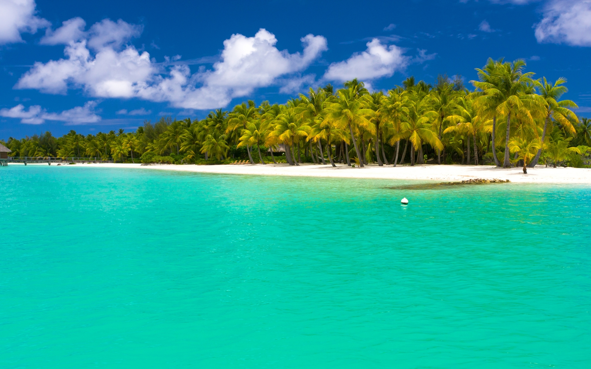 Amazing Tropical Island Desktop Background HD 1920x1200 1920x1200