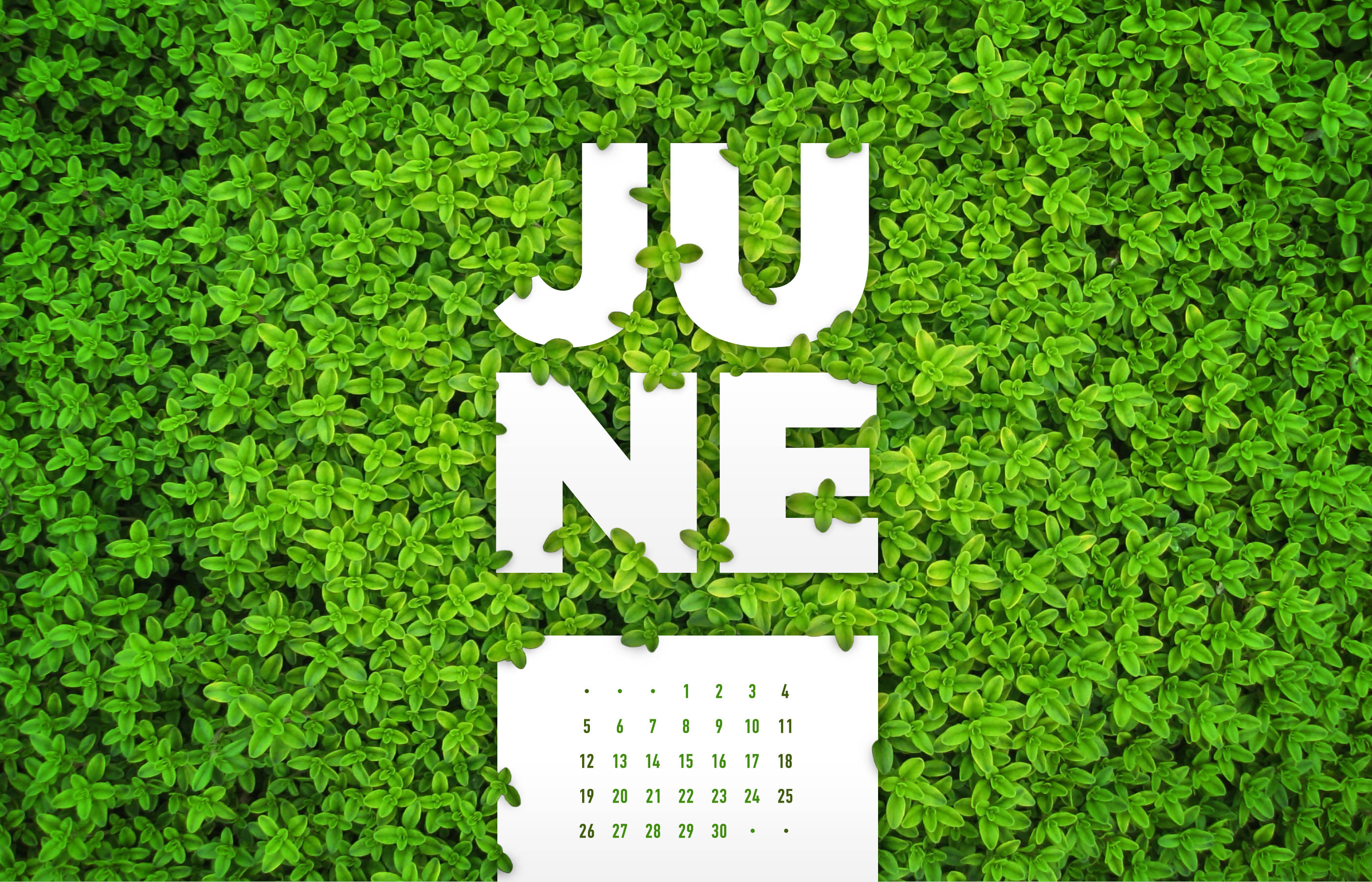 June 2016 Desktop Calendar Wallpaper Paper Leaf 2800x1800