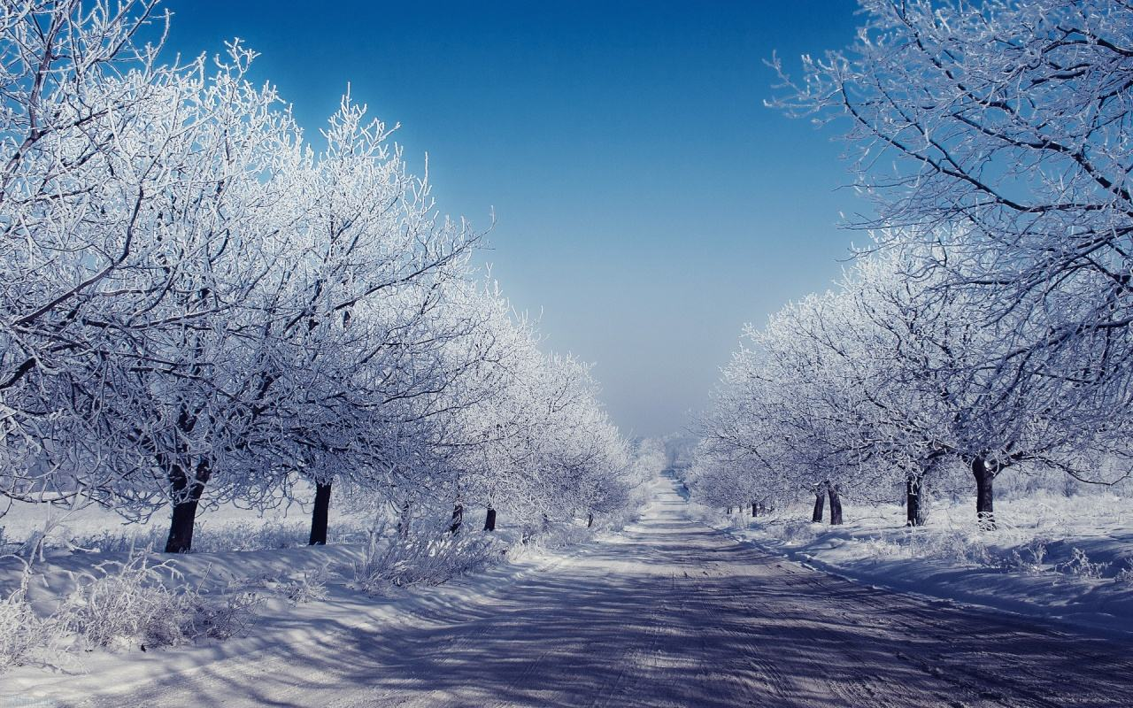 Windows Widescreen Winter Wallpaper - WallpaperSafari