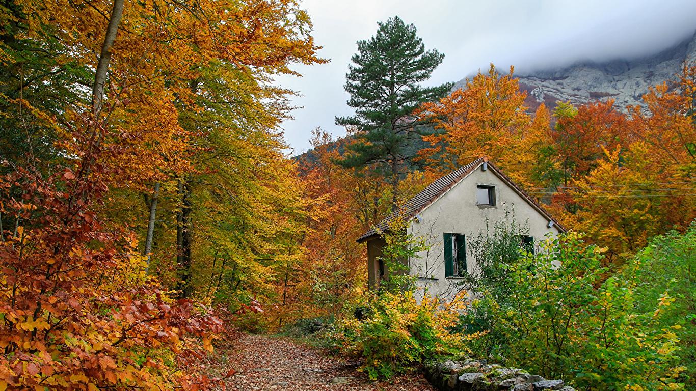 Images France Foliage Corsica Nature Autumn Roads Stones 1366x768 1366x768