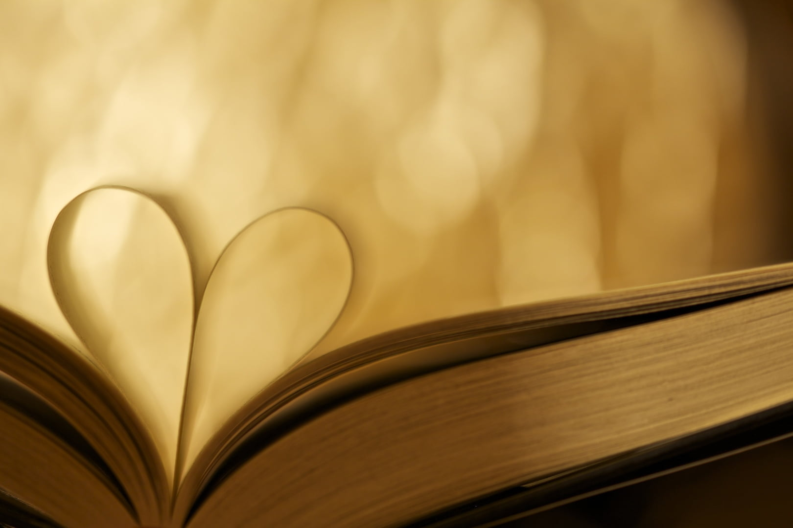 Photo of heart shaped book page HD wallpaper Wallpaper Flare 1620x1080