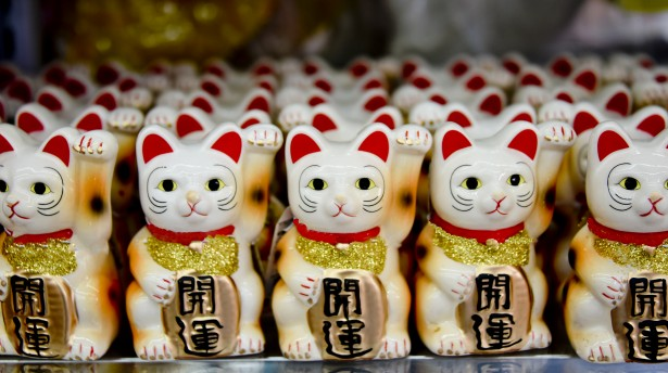 Japanese Lucky Cat Stock Photo   Public Domain Pictures 615x344