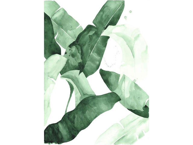 beverly 2 banana leaf tropical watercolor print green leaves the 640x480