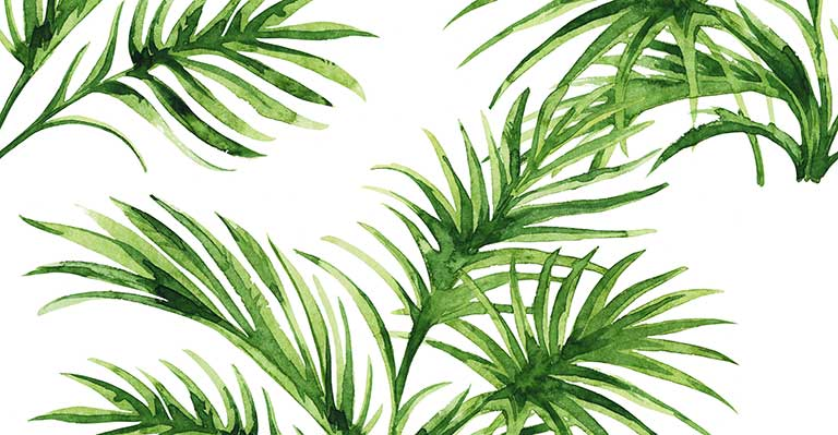 palm leaves painted custom wallpapers seamless patterns palm leaves 768x399