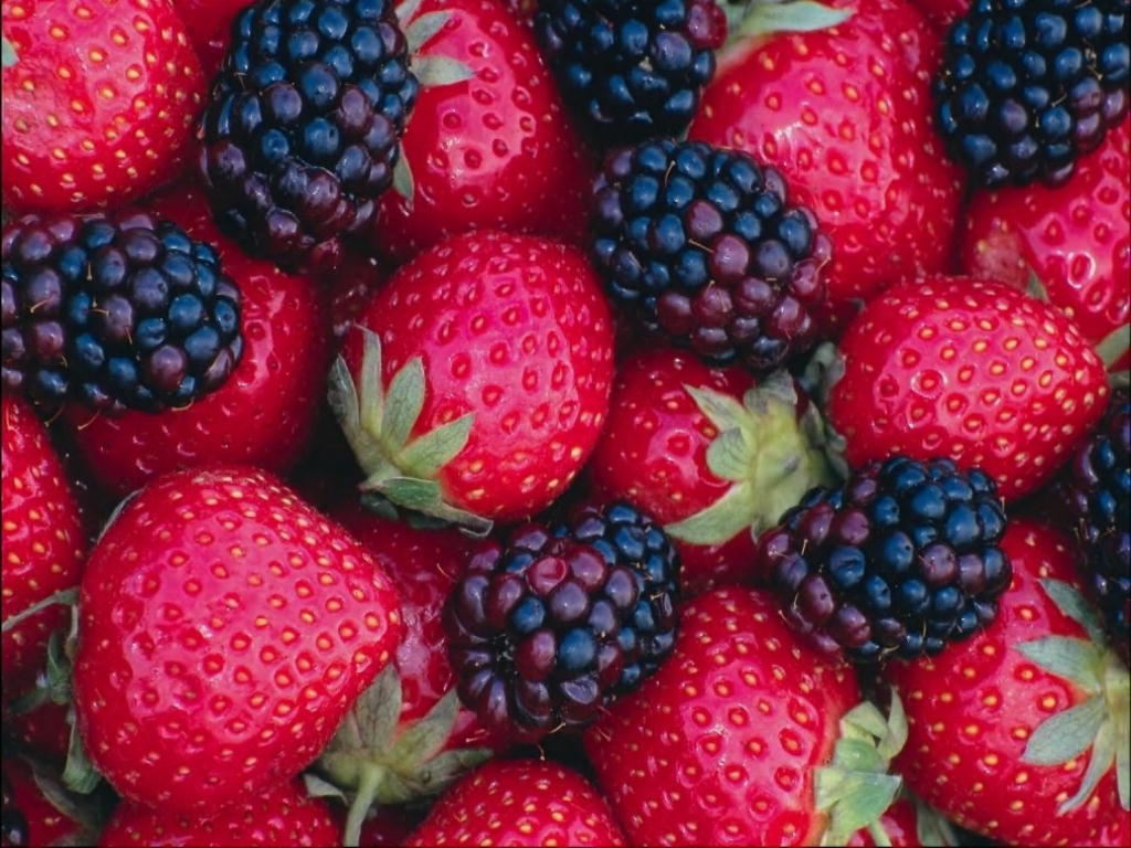 Strawberry Wallpaper   Fruit Wallpaper 6102232 1024x768