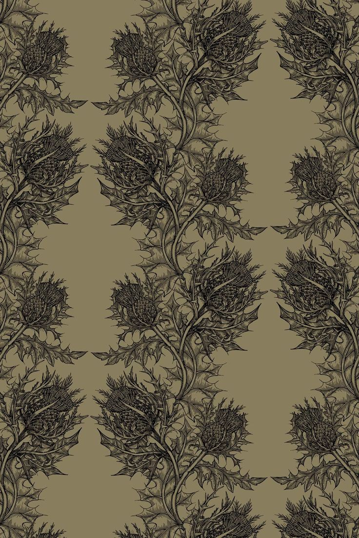 Timorous Beasties Wallcoverings   Thistle 736x1102