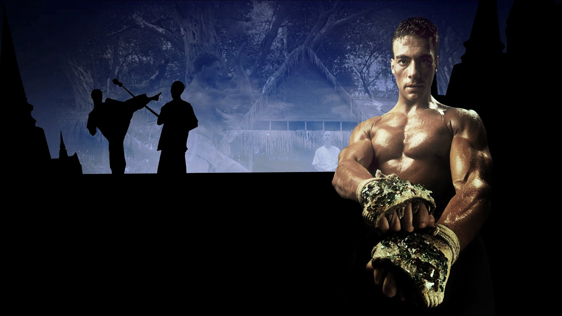 1 Kickboxer HD Wallpapers Background Images 1920x1080