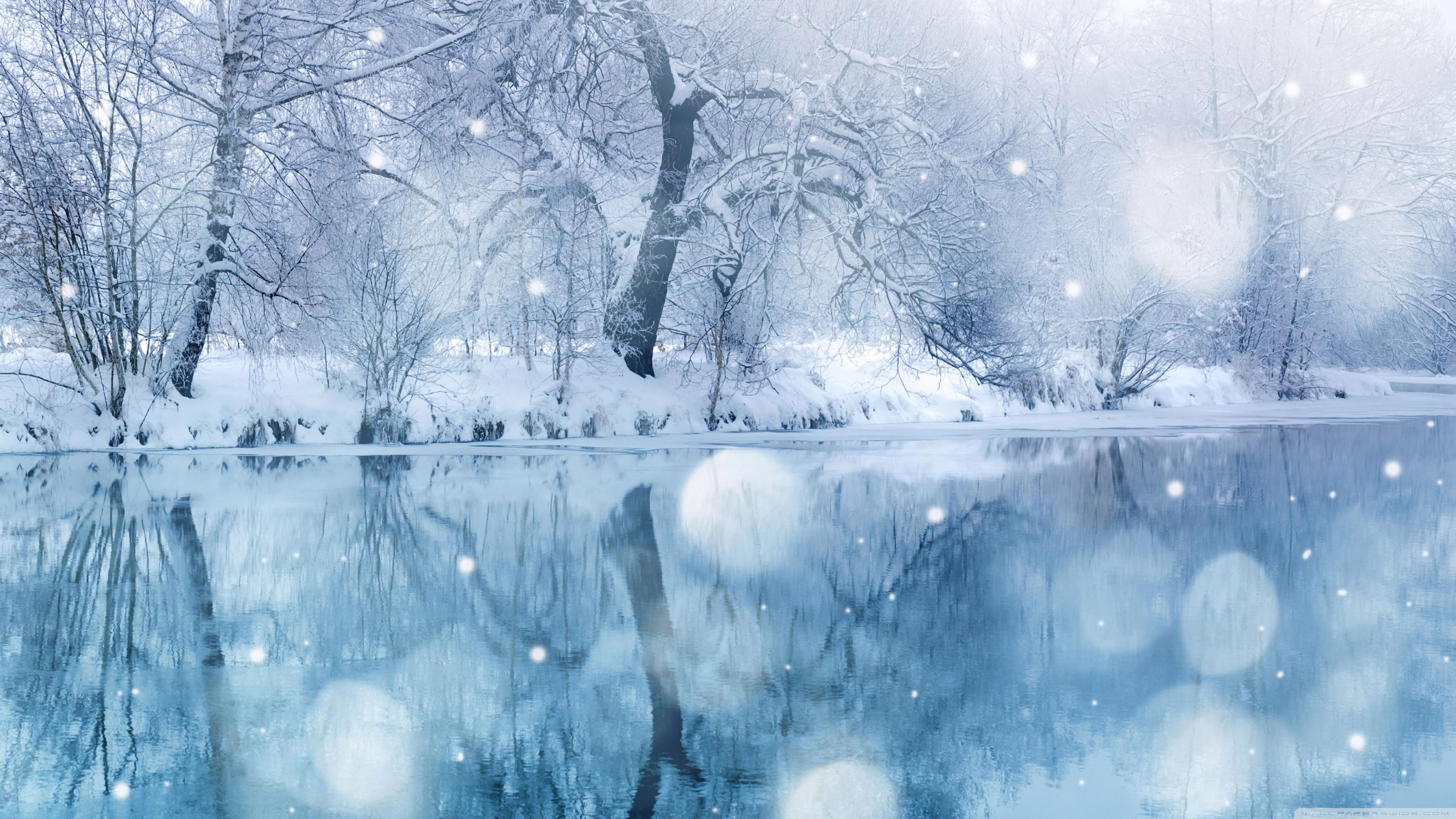 Winter Snowfall 4K HD Desktop Wallpaper