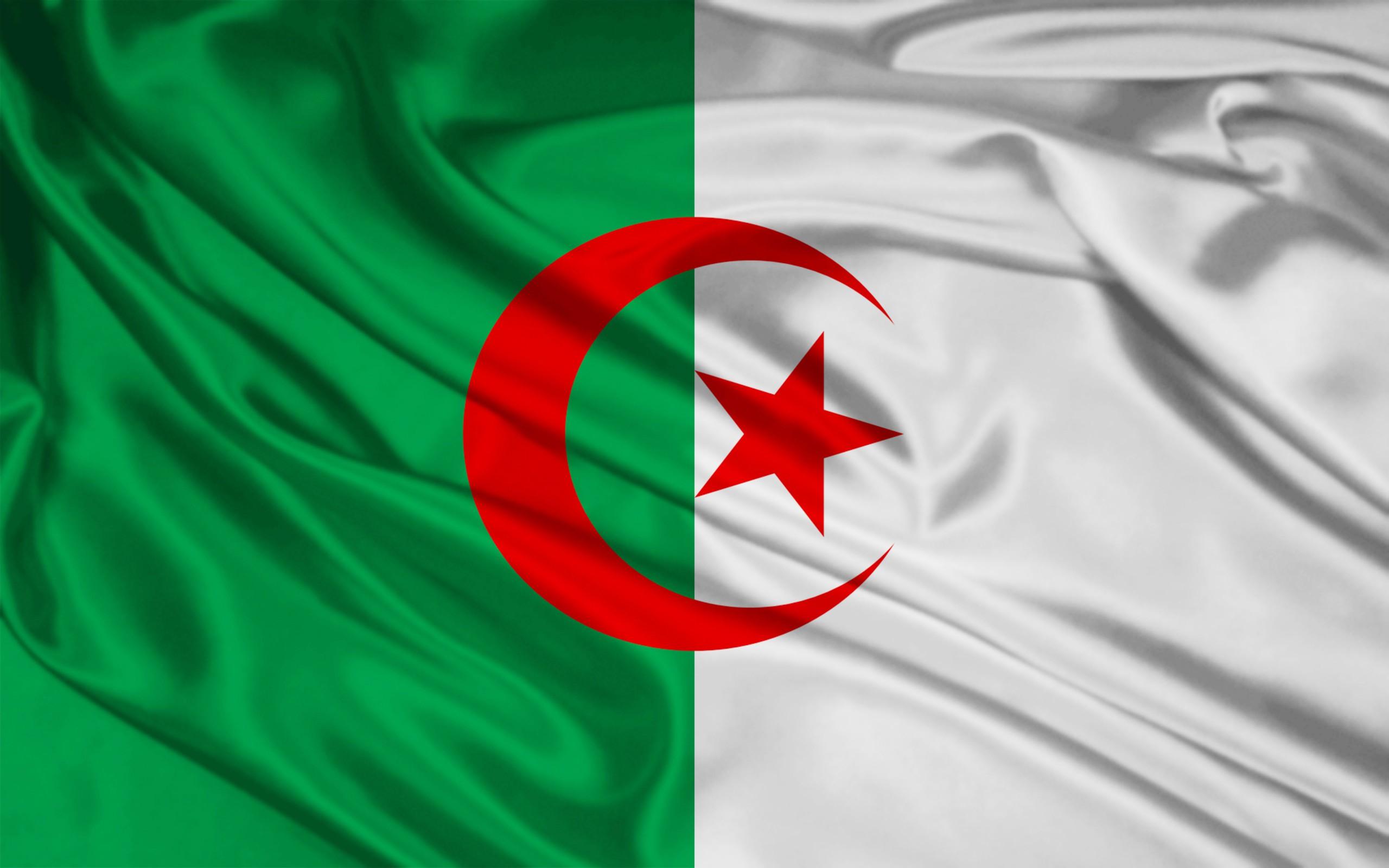 Top HD Algeria Flag Wallpaper Travelling HD 30138 KB 2560x1600