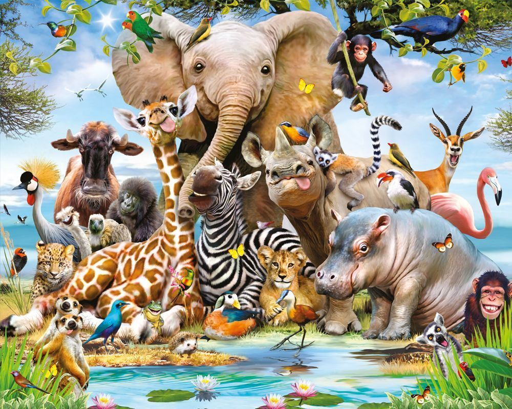 Jungle Animals Wallpapers   Top Jungle Animals Backgrounds 1000x798