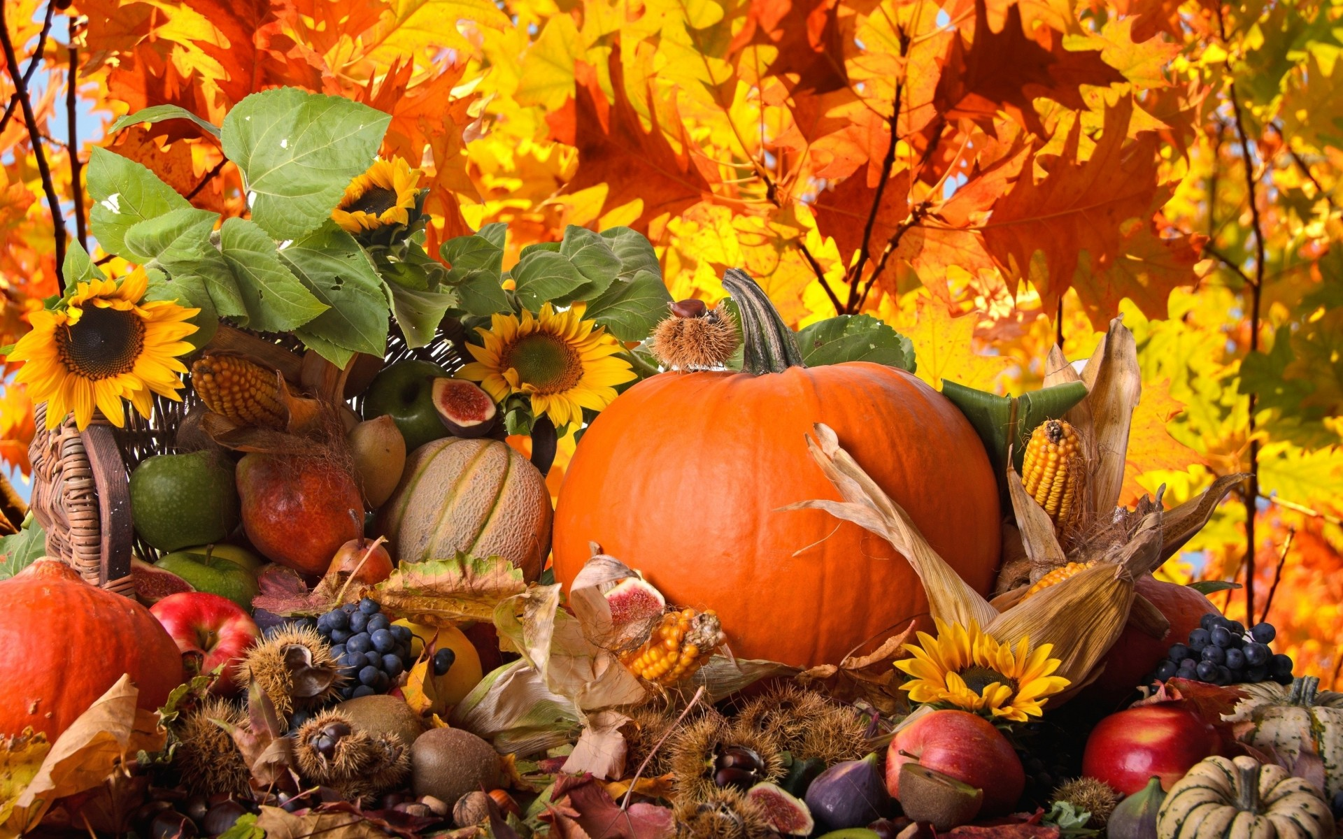 Thanksgiving Wallpapers HD for Desktop 75 images 1920x1200