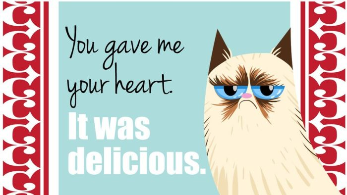 Valentine 39 s Day Cards of the Grumpy Cat 18 pics 700x394