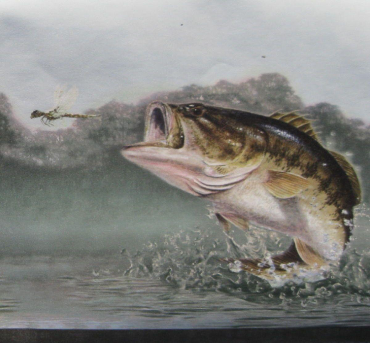 Largemouth Bass Wallpapers 1200x1111