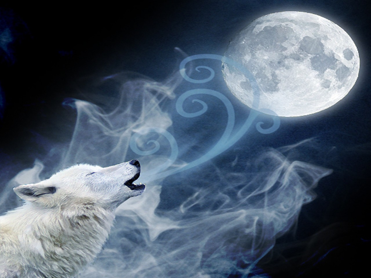 Free Download Howling Wolf Moon Wallpaper Howling Wolf Moon 1280x960 For Your Desktop Mobile Tablet Explore 48 Wolf And Moon Wallpaper Wolves Wallpapers For Desktop Wolf Wallpaper 1080p Wolf Wallpaper