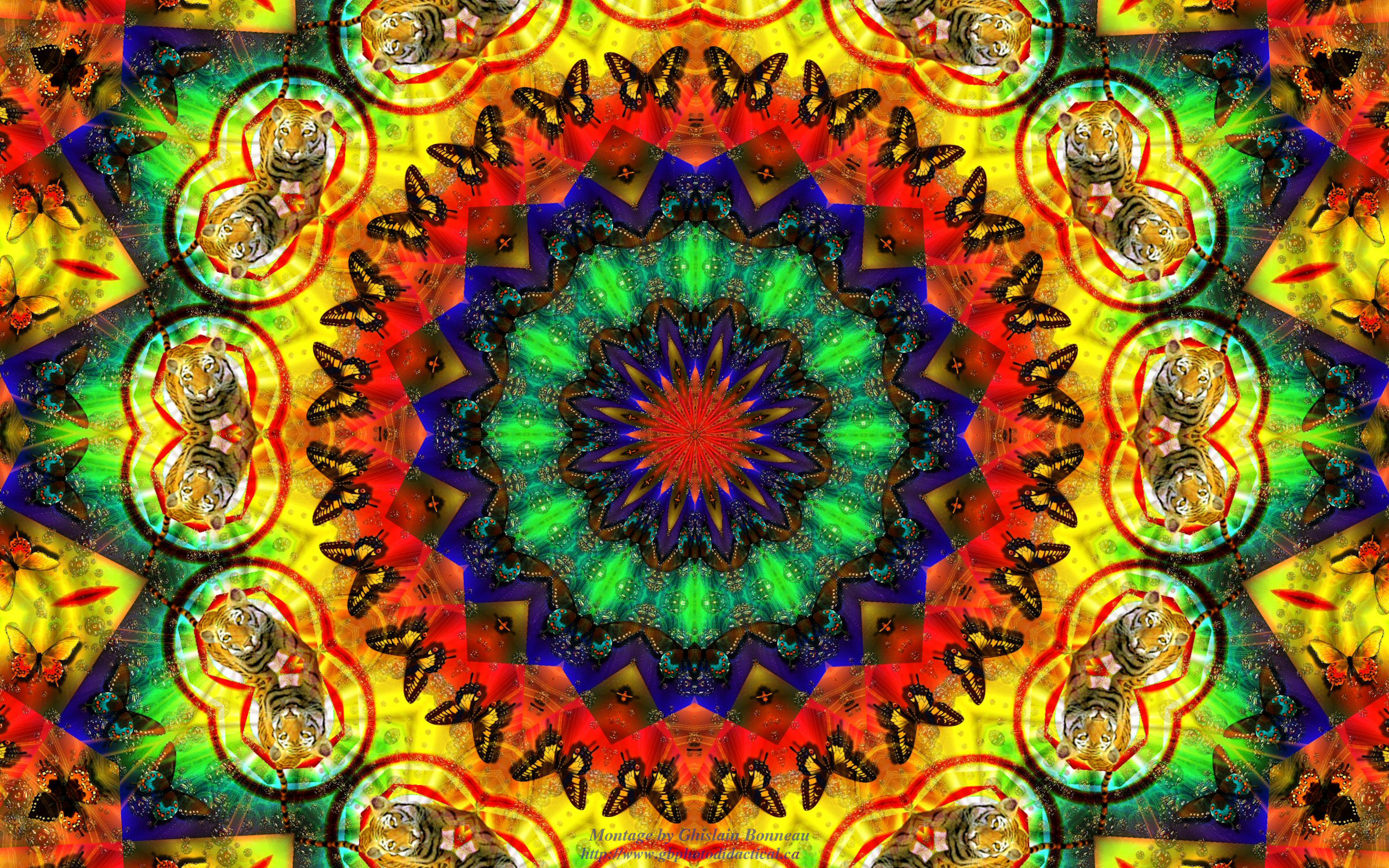 Hippie psychedelic wallpaper 4000x2500