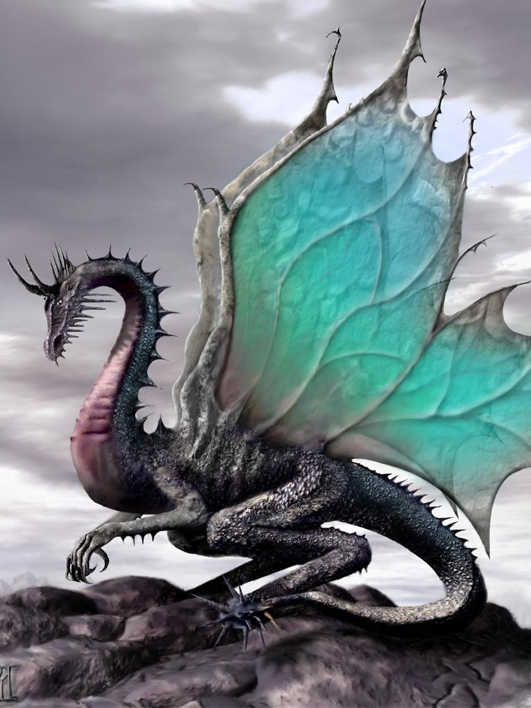 Dragon Wallpapers Download 768x1024