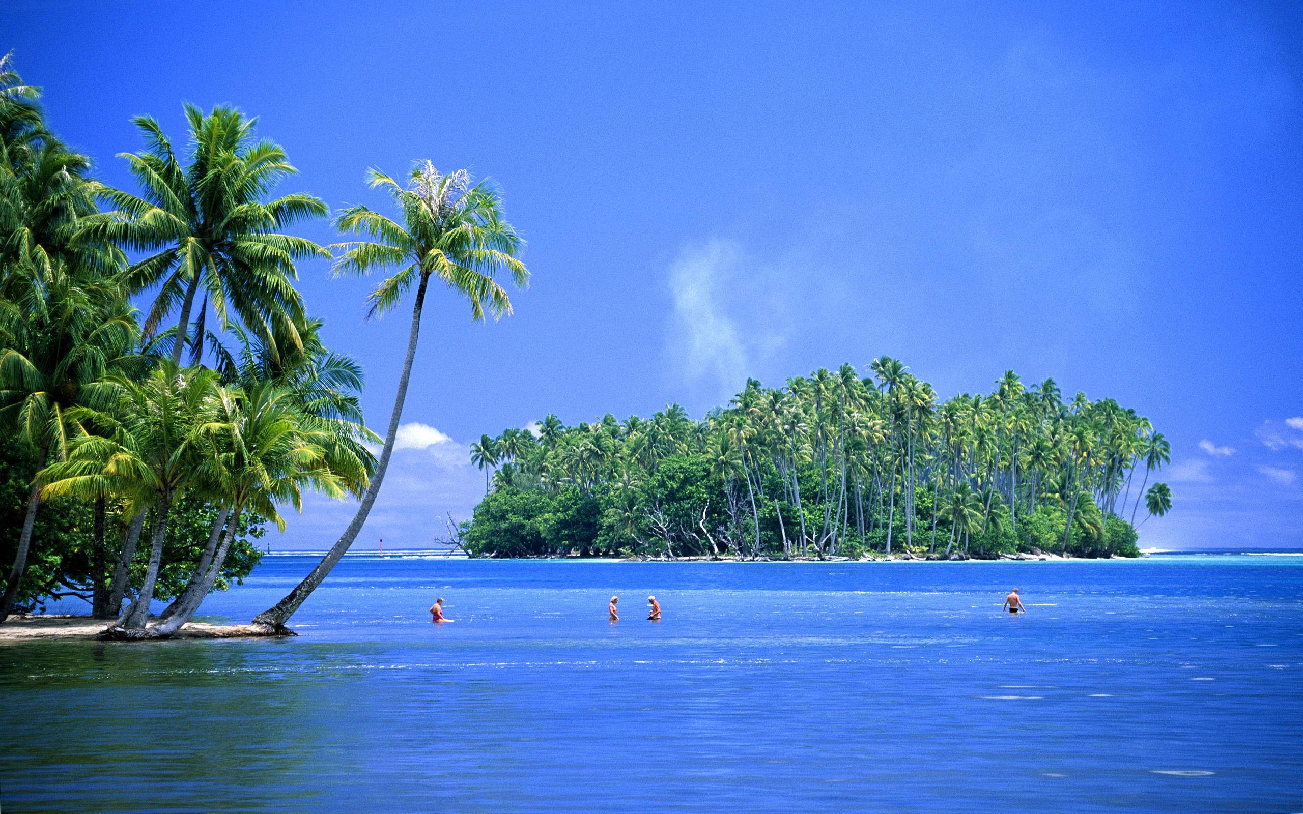 caribbean island postcard wallpaper - photo #14
