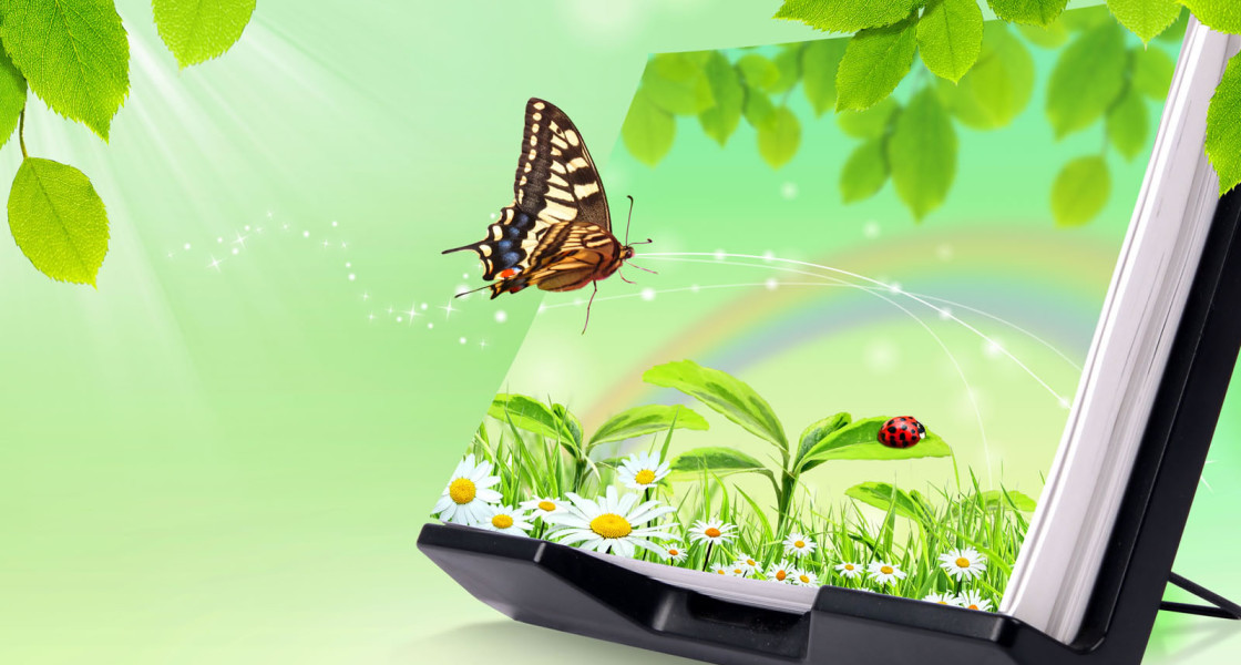Butterfly flying 3D wallpaper wallpapers55com   Best Wallpapers for 1120x600