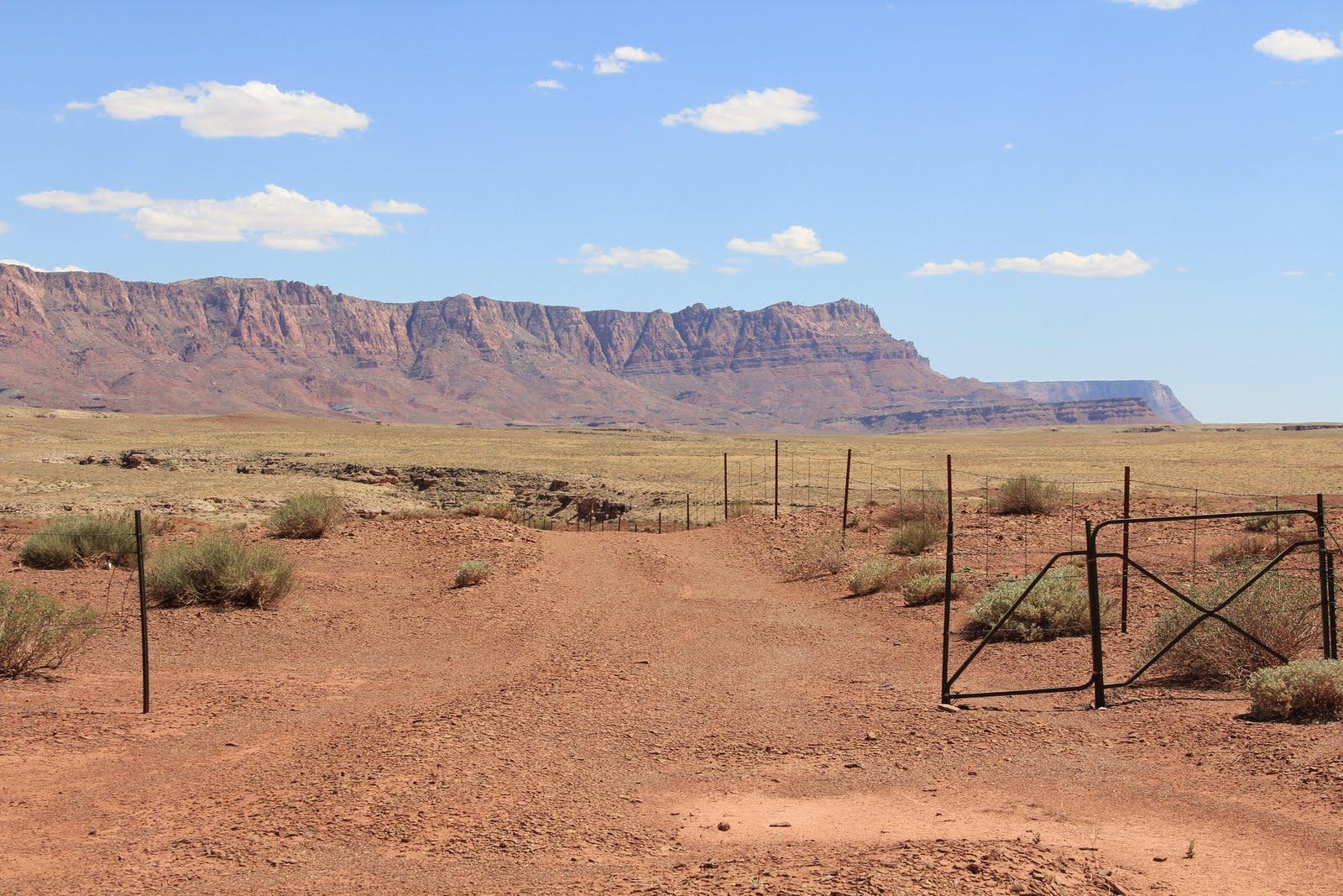 Arizona Desert 1600x1067